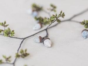 Delicate Acorns